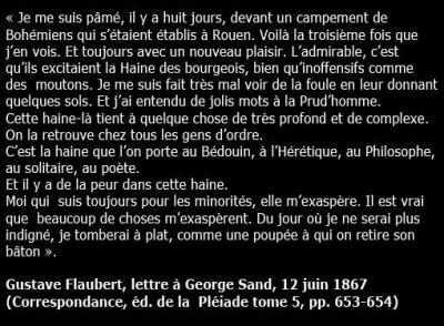 citation flaubert.jpg