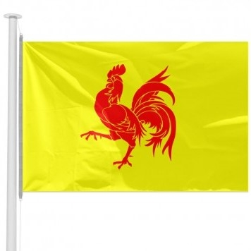 coq wallon drapeau.jpg